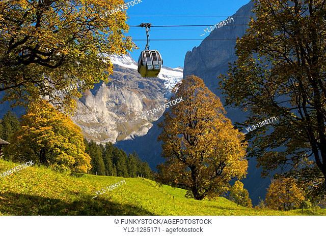 Alpine pastures with cable car- Swiss Alps, Grindelwald, Switzerland