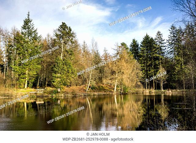 Penninghame Pond in Dumfries & Galloway