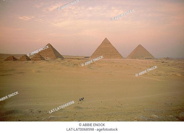 Three pyramids in desert. Great Pyramid of Cheops. Pyramids of Chephren/ Mycerinus. Pink sky