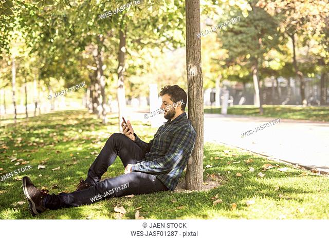 Man sitting on meadow in autumn looking at cell phone