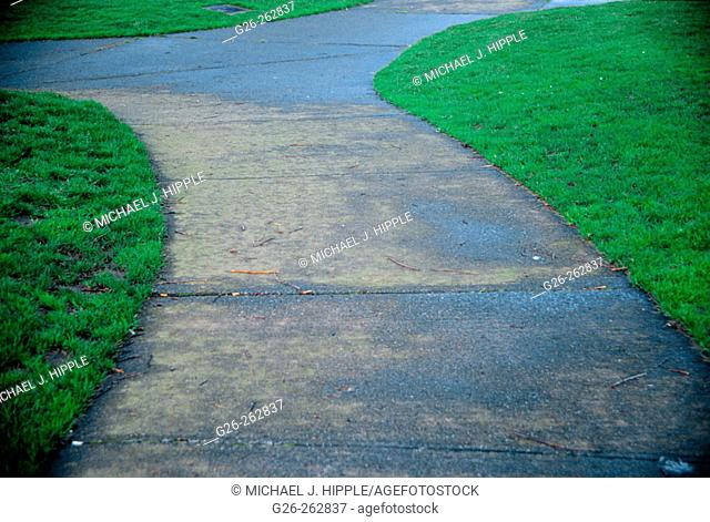 Pathway in Madrona Neighborhood. Seattle. Washington. USA