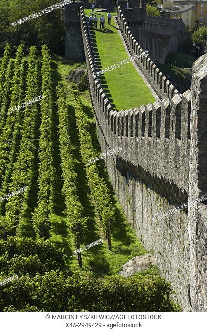 Vineyard and Defense Walls of Bellinzona