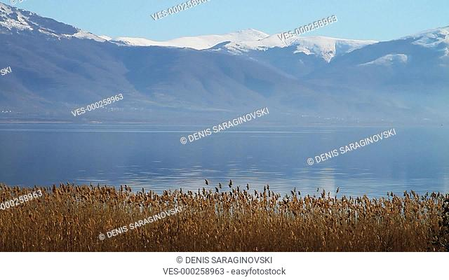 Landscape with rippling lake surface, mountains and reed plant