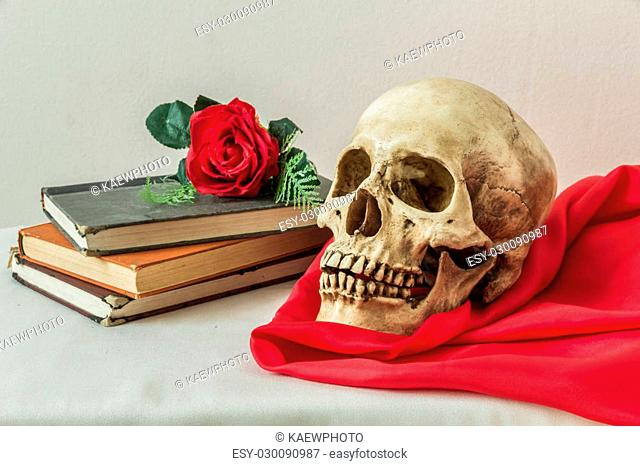 Still life with a human skull with a fake red roses and a books on a white background