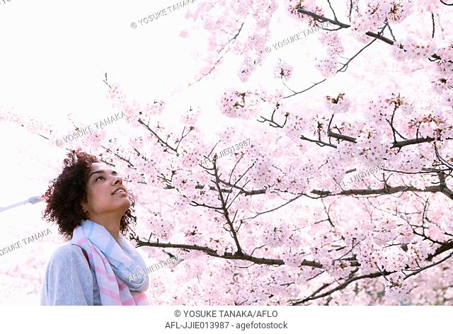 Young woman enjoying cherry blossoms blooming in Tokyo