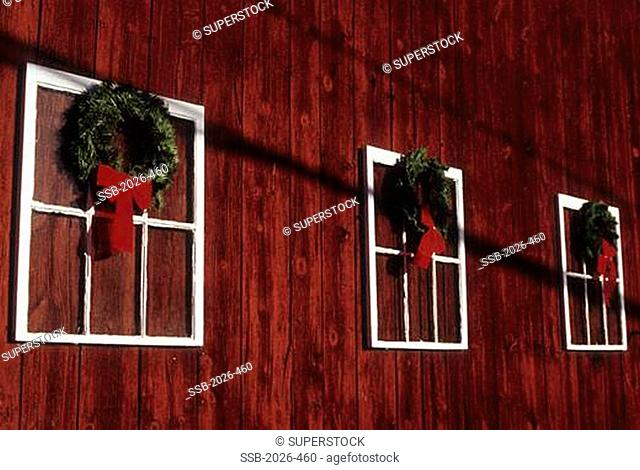 Christmas wreaths hanging on the wall of a barn, New Jersey, USA
