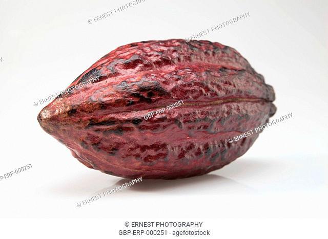 Fruit, cocoa, isolated, white background