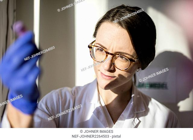 Technician looking at test tube in laboratory