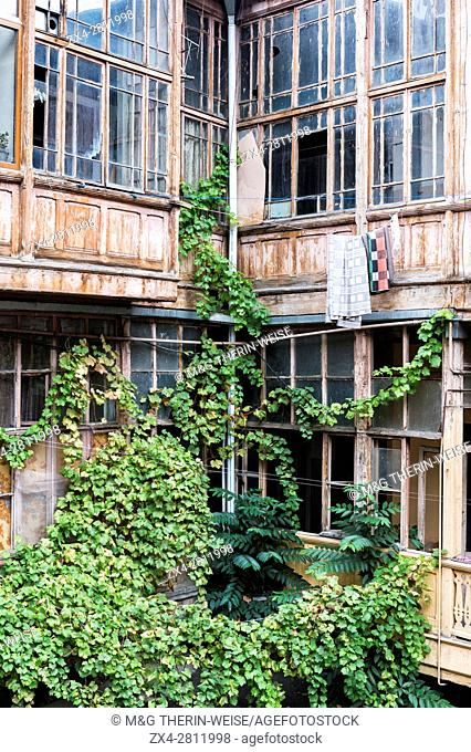 Wine leaves growing on houses in Old Tbilisi, Georgia, Caucasus, Middle East, Asia