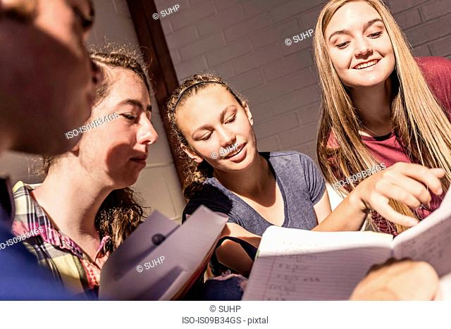 Teenagers reading notes in high school study group