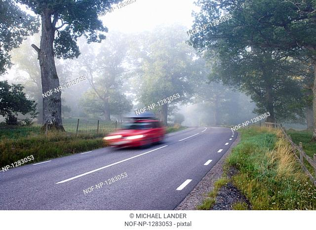 A red car driving in the countryside
