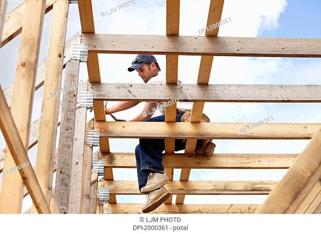 tradesman working on framing for new home construction, st. albert alberta canada