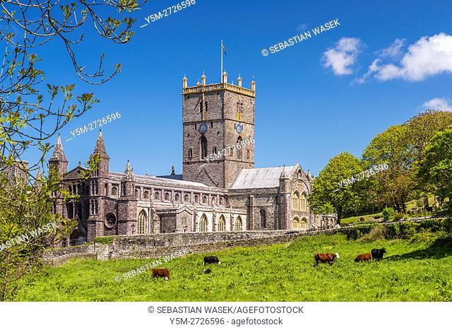 St Davids Cathedral, Pembrokeshire Coast National Park, Pembrokeshire, Wales, United Kingdom, Europe