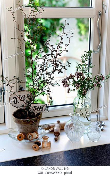 Plant pot, vintage price tags and thread bobbins on windowsill