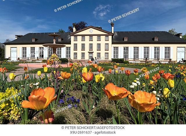 spring flowers and the Pavillon Josephine at the Park Parc de l'Orangerie in Strasbourg, Alsace, France