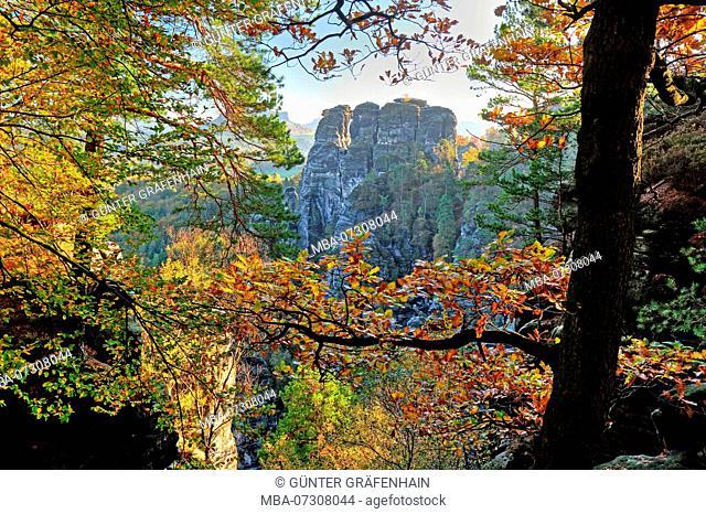 Rock landscape at the Bastei, health resort Rathen, Elbe Sandstone Mountains, Saxon Switzerland, Saxony, Germany