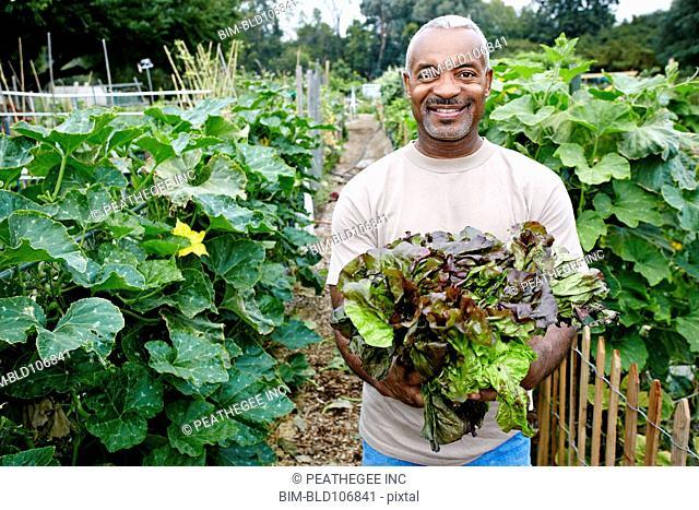 Black man holding lettuce in community garden