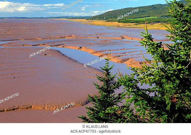 Daniels Flats, Low Tide, Bay of Fundy, Atlantic Ocean, Hopewell, New Brunswick, Canada