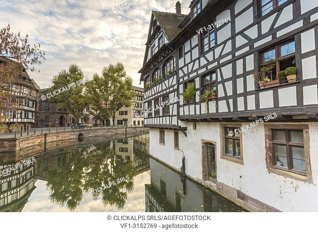 Half timbered houses on the canal of Petit France, Strasbourg district, Alsace, Grand Est region, Bas-Rhin, France