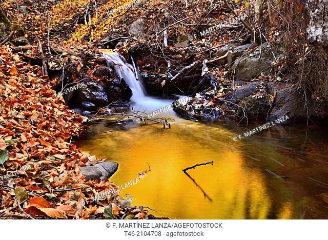 Creek, Reserva natural del Valle de Iruelas, Avila province, Castile-Leon, Spain