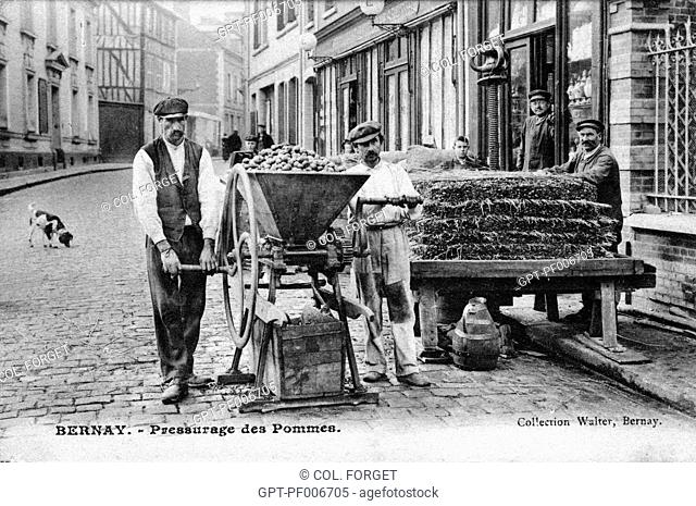 PRESSING OF THE APPLES, BERNAY, (27) EURE, UPPER NORMANDY, FRANCE