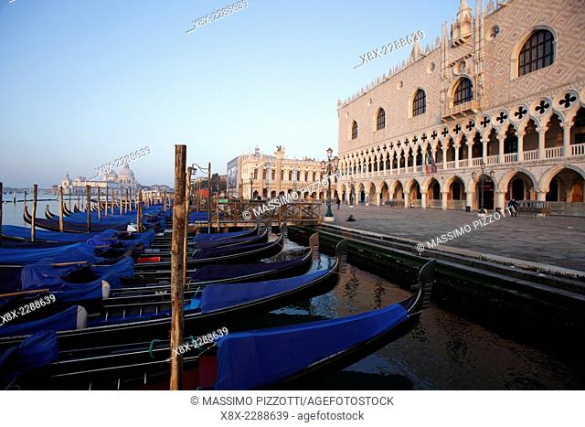 Gondolas in front of the Doge's Palace in St. Mark's Square, Venice, Italy