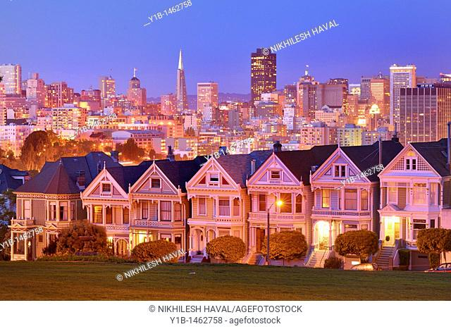 2010 San Francisco Skyline and Painted Ladies, California