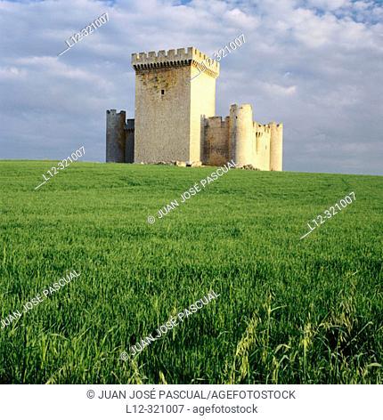 Castle (built 15th century). Villalonso. Zamora province, Spain