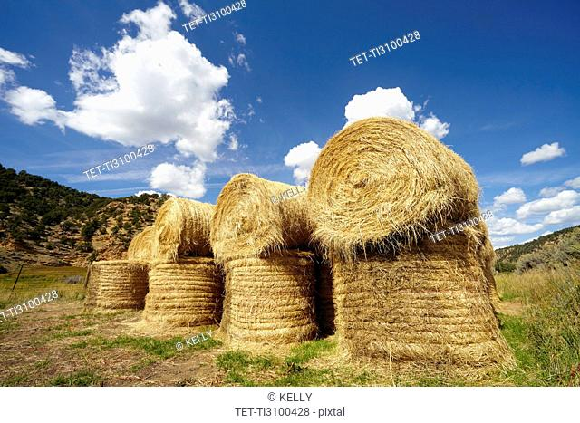 Idyllic scene of hay stacks on field