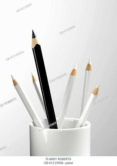 Tall black pencil in cup with smaller white pencils still life