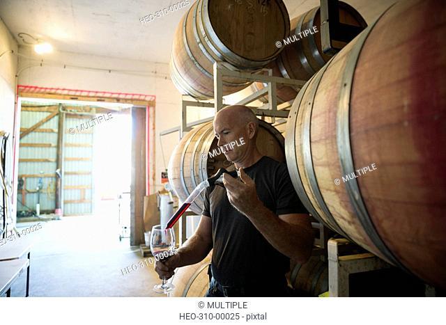 Vintner checking red wine in winery barrel room