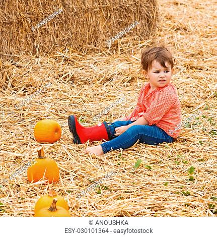 Portrait of a cute funny adorable Caucasian baby toddler in red shirt and blue jeans sitting on hay on farm with pumpkins and trying to put on her red rain...