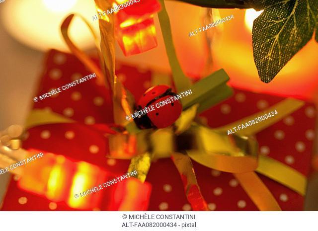 Christmas present decorated with ladybug