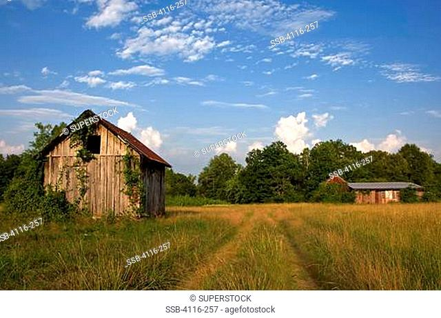 Abandoned barn with a shack in a field, Arkansas, USA