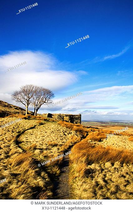The Bronte Way at Top Withins Haworth Moor West Yorkshire Englan