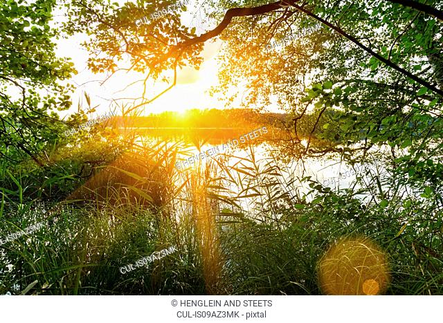 Sunset over lake, Osterseen, Bavaria, Germany