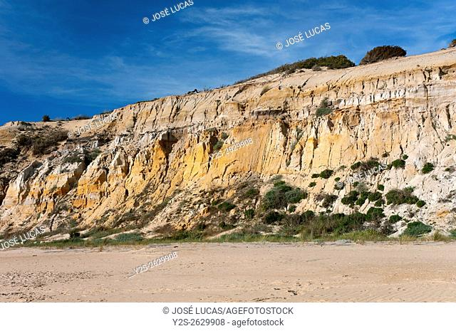 Natural Monument Cliffs of the Asperillo, Almonte, Huelva province, Region of Andalusia, Spain, Europe