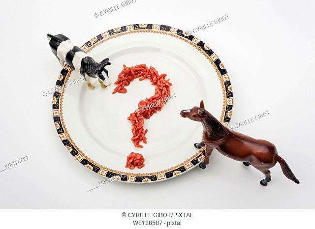Beef or horsemeat - Image to illustrate the scandal over horse meat in beef products
