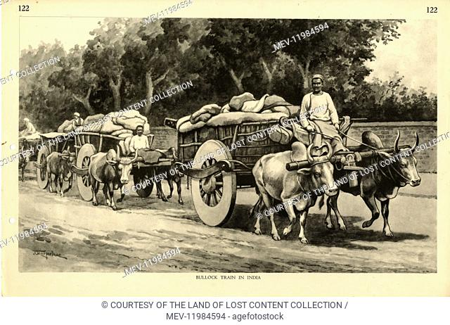 Bullock Train in India, by Australian artist J. Macfarlane. J Macfarlane was a late colonial period painter, political cartoonist and illustrator