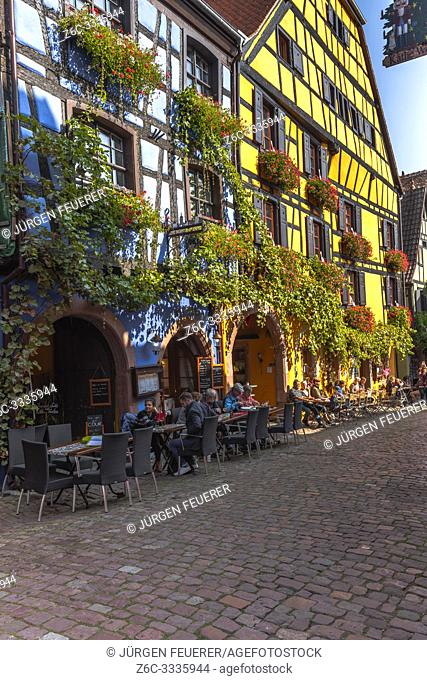 picturesque timber houses overgrown with vine, Riquewihr, Alsace, France, historcial old village and touristy site