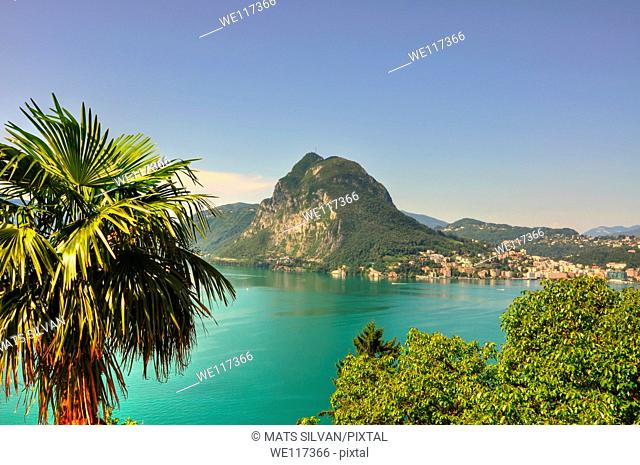 Lake with mountain and palm tree with blue sky and cityscape