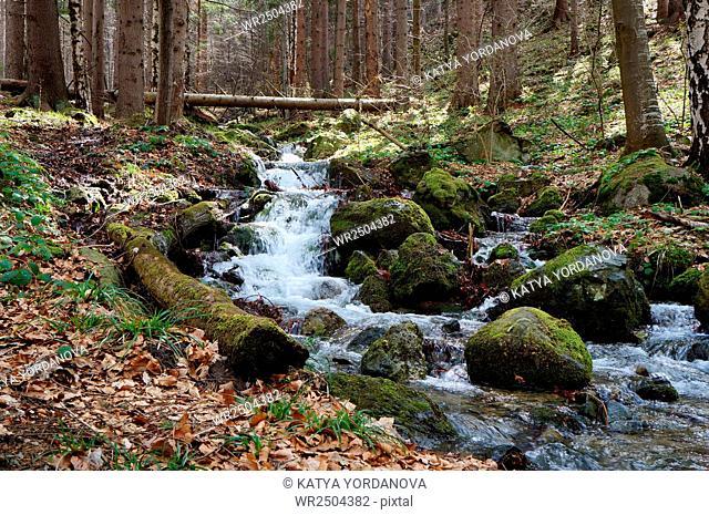 Rocky Stream in mountain
