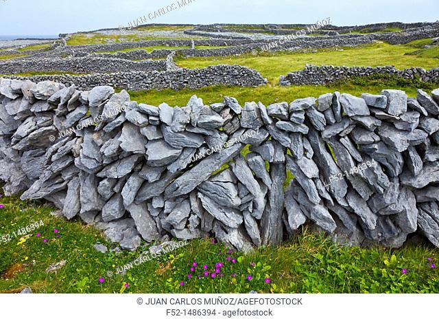 West coast  Inishmore Island, Aran Islands, Galway County, West Ireland, Europe