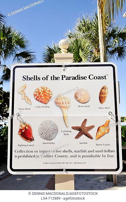Identification sign of the sea shells of the paradise coast at Fort Myers Beach Florida