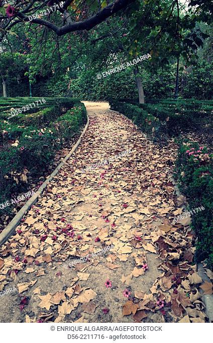 Path in a garden, Valencia, Spain
