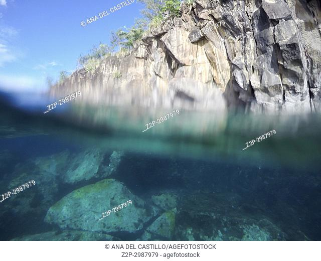 Reef Underwater, Caribbean sea ,Les Trois-Ilets, Martinique, French Antilles