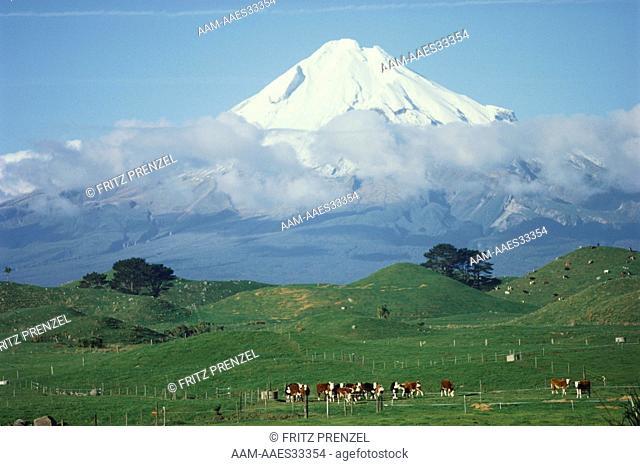 Volcano Mt. Taranaki, New Zealand , winter