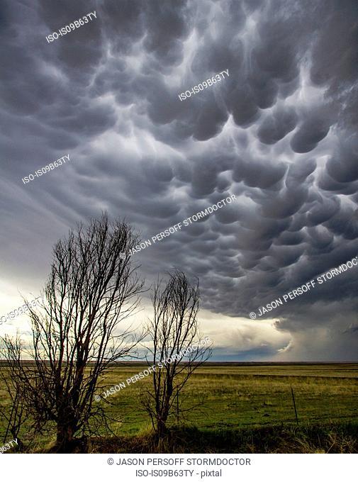 Mammatus clouds in rural area, Last Chance, Colorado, United States, North America