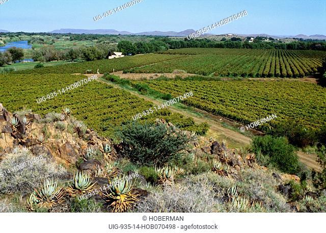 Cape Wine Route Ð Orange River, Northern Cape