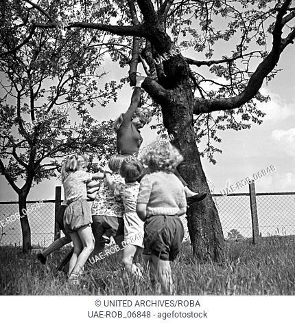 Die deutsche Schauspielerin Karin Stoltenfeldt spielt mit Kindern im Garten, Deutschland 1950er Jahre. German actress Karin Stoltenfeldt helping playing with...